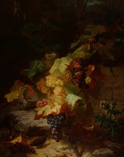 Grapes and a Finch on a Rocky Bank