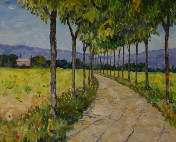 Path Through Vines