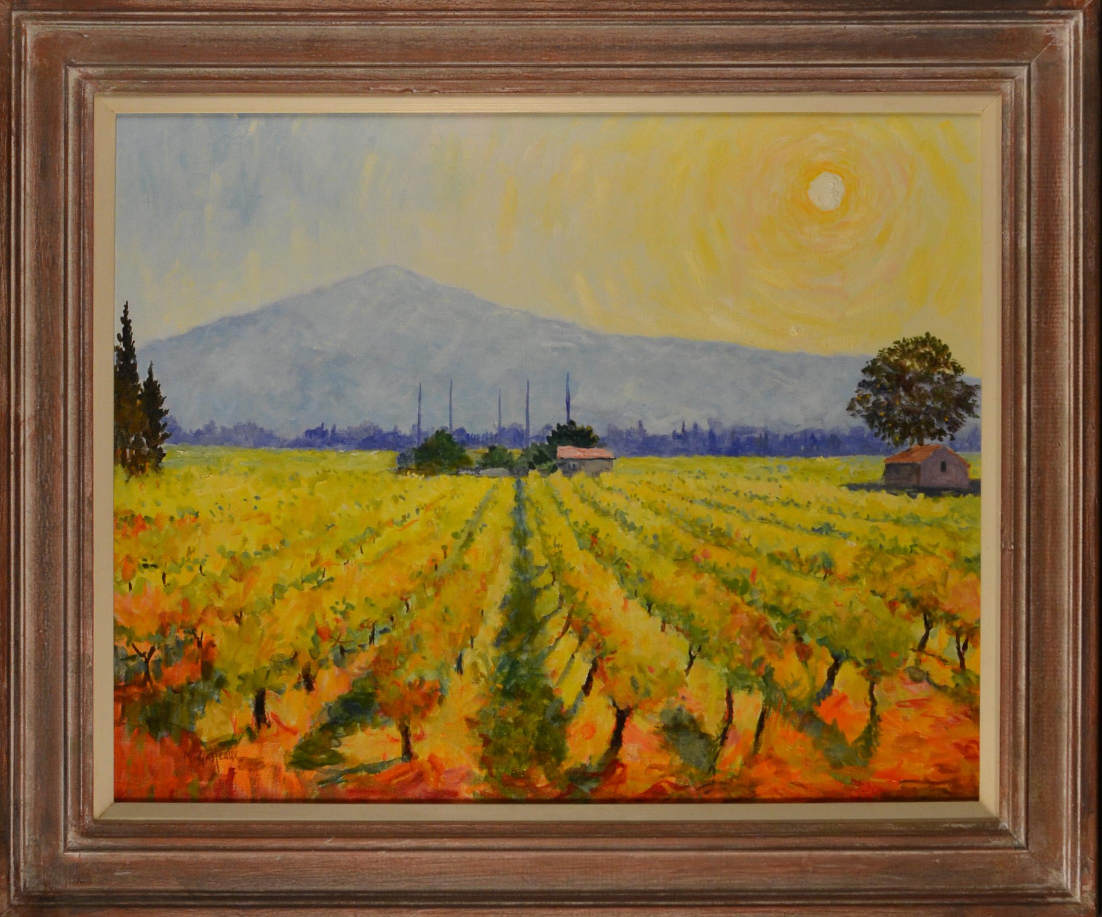Mont Ventou & Vines