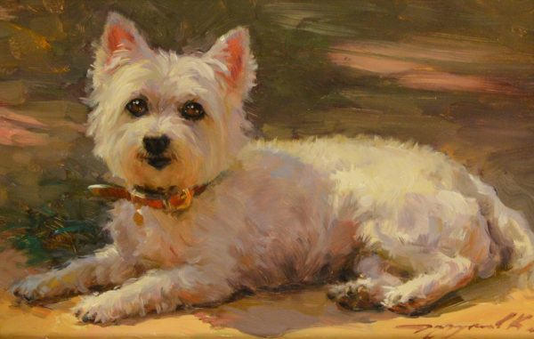Study of a Terrier